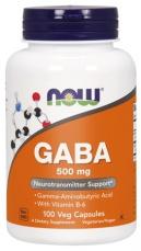 Now Foods Gaba 500 mg
